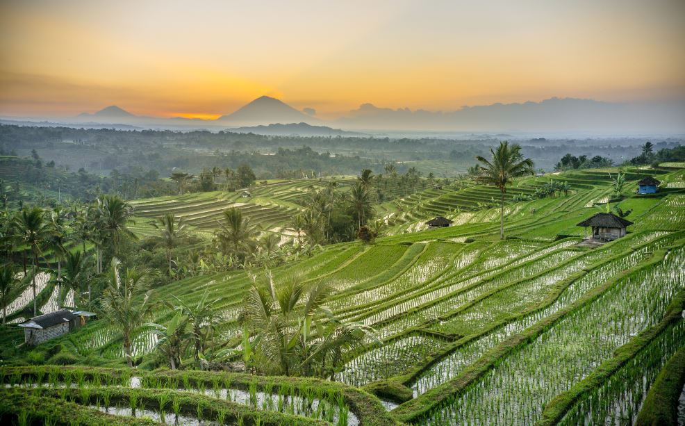 Bali Eyes July Re-Opening As Vaccine Rollout Picks Up Pace